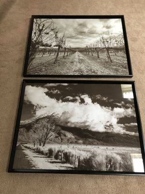 Two black and white pictures - 40 x 30 for Sale in Evesham Township, NJ