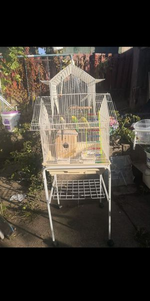 Beautiful cage for sale with stand for Sale in Queens, NY
