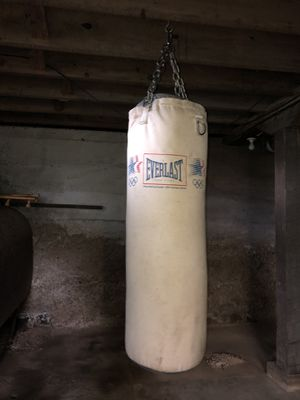 Punching bag Everlast for Sale in Sunbury, PA