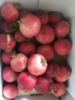 Pomegranates. Just picked for Sale in Corona, CA