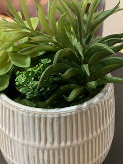 Decorative Fake Plant for Sale in Lorton,  VA