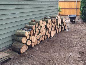 Free Douglas Fir firewood just cut for Sale in Lynnwood, WA