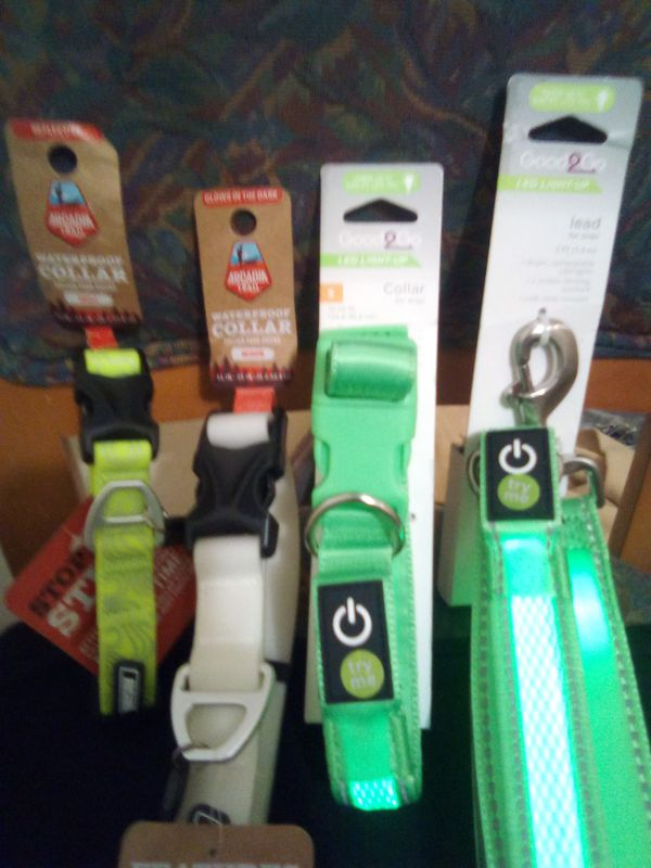 LED and glow in the dark dog collars and lead