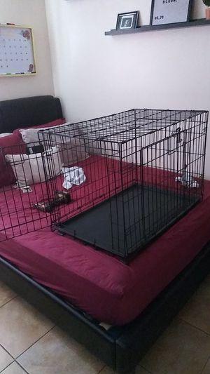 Dog Kennel for Sale in Alafaya, FL