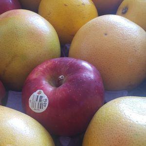 Manzanas ,nanranajas ,y Toranjas for Sale in Rockville, MD
