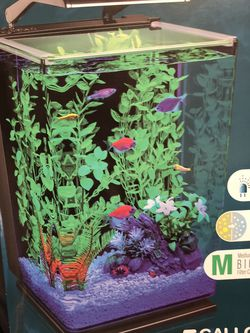 Fish Tank for Sale in Lynnwood,  WA