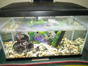 10 gallon fish tank and decorations for Sale in Baldwin Park, CA