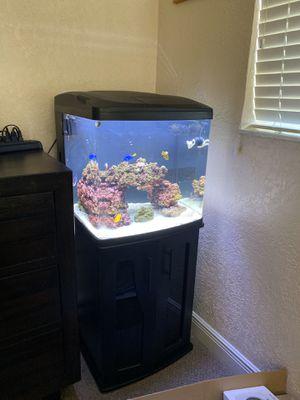 Bio cube 32 gallon for Sale in Hialeah, FL