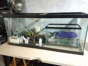 75 gallon fish tank for Sale in Seattle, WA