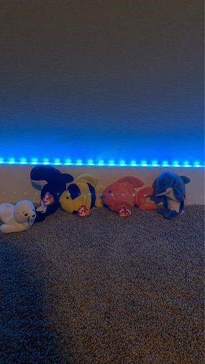 5 RARE aquatic beanie baby's all from 1990's. for Sale in West Bloomfield Township, MI