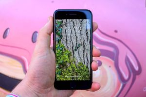 2020 iPhone SE for Sale in Terre Haute, IN