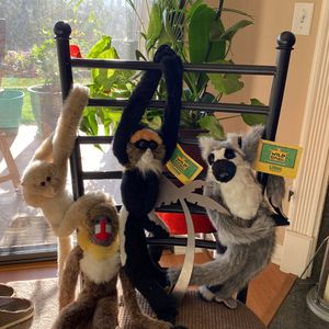 Hanging Plush Monkeys Velcro Hands/legs Excellent Condition Near New Lot Of 4 for Sale in Encinitas, CA