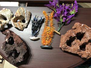Aquarium rocks and plants for Sale in Opa-locka, FL
