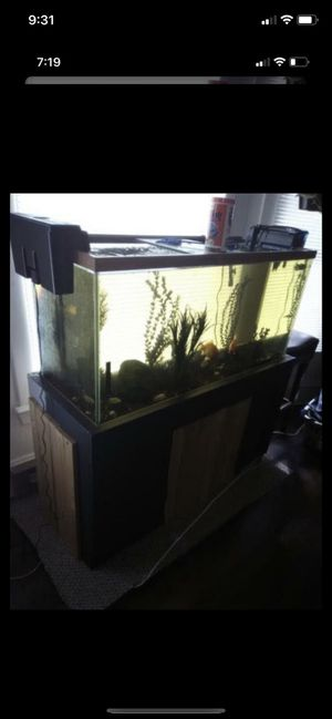 75 gallon tank with everything to keep fish for Sale in Marysville, WA