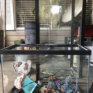 20 Gallon With Light And Filter for Sale in Apopka, FL