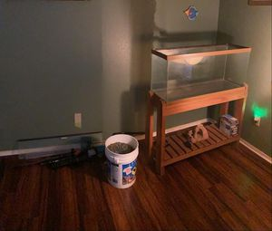 Fish Tank & Complete Set-Up for Sale in Missouri City, TX