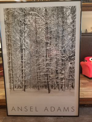 Ansel Adams photograph, white winter forest framed for Sale in Frisco, TX