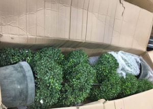 Admired By Nature 5' Plastic Pot 2' x 5' Artificial Spiral Boxwood Topiary Plant Tree, Twin Pack for Sale in Las Vegas, NV