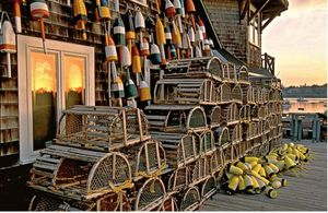 Special education teacher ISO Lobster traps for Sale in Chelsea, ME