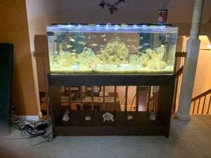 60 gallons acrylic fish tank for Sale in Springfield, VA