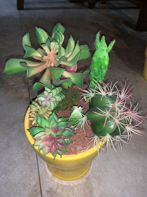 homemade fake succulent and cactus plant for Sale in Miami, FL