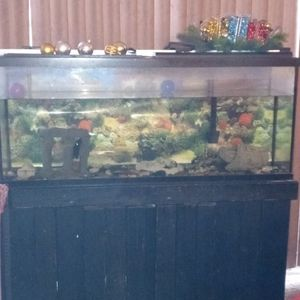 Black Fish Tank for Sale in Baltimore, MD