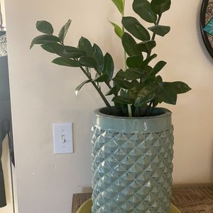 Plant And Glass Planters (2) for Sale in Redondo Beach, CA
