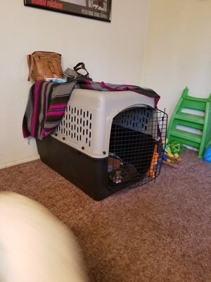 Large breed dog kennel for Sale in Portland, OR
