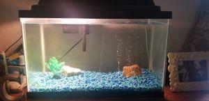 10 gallon fish tank. Aquarium. for Sale in Lynnwood, WA