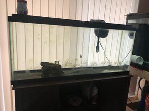 55 gallon fish tank for Sale in Orlando, FL