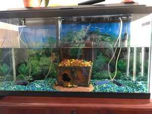 25 long gallon fish tank for Sale in Redwood City, CA