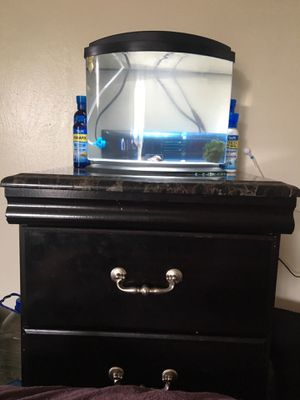 Fish, with fish tank, filter, stand, food, and water treatments for Sale in Pittsburgh, PA