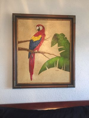 Scarlet Macaw painting by Cooper for Sale in Miami, FL