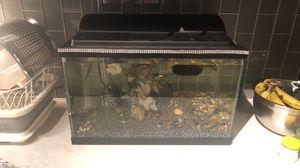 Complete fish tank 10 gal set for Sale in Denver, CO