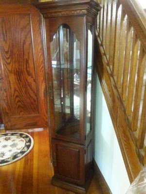 Lighted Curio cabinet for Sale in Elizabeth, NJ