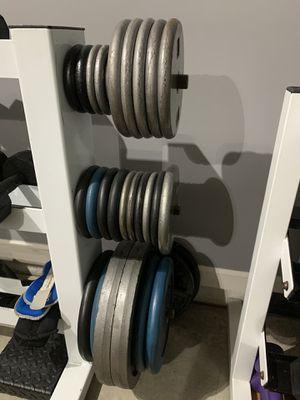 372.5lbs Weight + Bars for Sale in Atlanta, GA