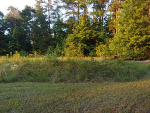 Land for sale 3.31 acres Hallsville school district for Sale in Hallsville, TX