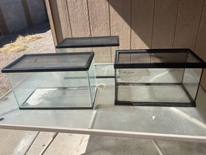 10 Gallon Tanks for Sale in Fort McDowell, AZ