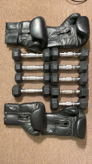 3 & 5lbs dumb bells and size 14 boxing gloves for Sale in Leonia, NJ