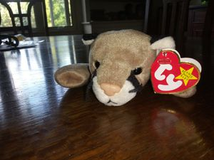 """Rare """"canyon"""" beanie baby for Sale in Hudson, OH"""
