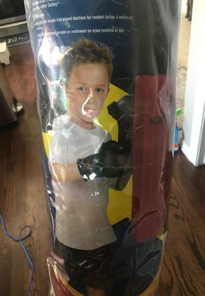 Century punching bag and gloves, for Sale in Aurora, CO