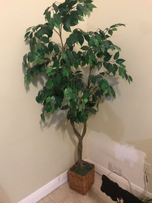 Fake/faux plant for Sale in Alafaya, FL