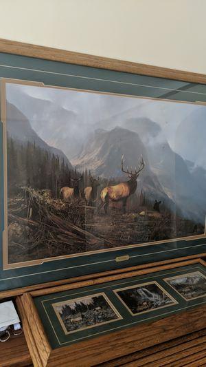 Michael Coleman bookcliffs elk for Sale in Fife, WA