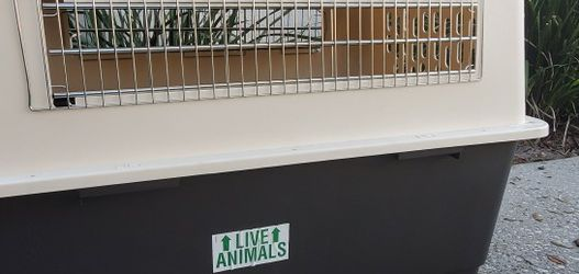 Airline approved dog kennel for Sale in Lutz,  FL