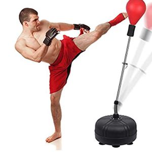 Speed Ball Boxing Bag for Sale in Philadelphia, PA