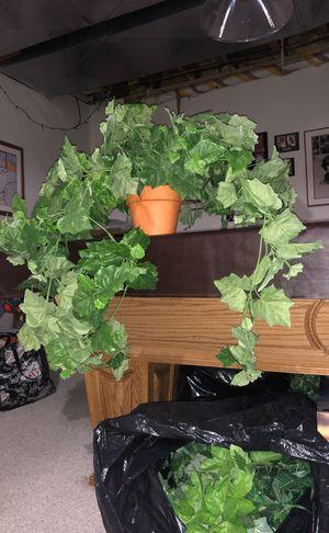 Pretty decorative Fake Plant for Sale in Plymouth, MI