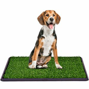 30''x20'' Puppy Pet Potty Training Pee Indoor Toilet Dog Grass Pad Mat Turf Patch for Sale in Los Angeles, CA