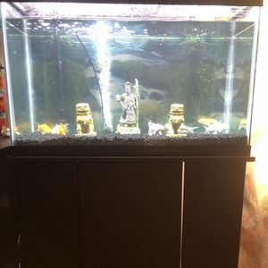30 Gallon Fish Tank With Stand Full Set Up Ready To Use for Sale in Mount Hamilton, CA