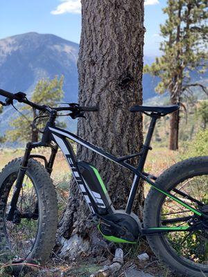 2019 Electric Mountain Bike Pedal Assist....Bulls Monster E S for Sale in Santa Clarita, CA