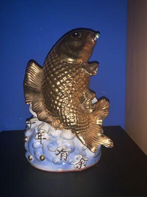 Koi fish for Sale in Sunrise, FL